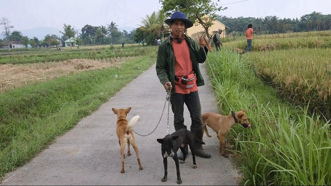 Komunitas Ajag Resing Banjaran Bandung